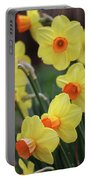 Dallas Daffodils 01 Portable Battery Charger
