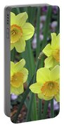 Dallas Daffodils 26 Portable Battery Charger