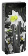Dallas Daffodils 54 Portable Battery Charger