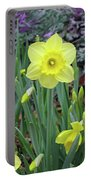 Dallas Daffodils 83 Portable Battery Charger