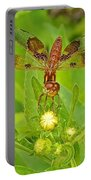 Dancing Dragonfly Portable Battery Charger