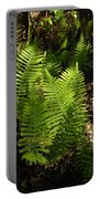 Dancing Ferns Portable Battery Charger