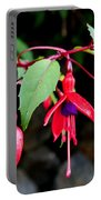 Dancing Fuchsia Portable Battery Charger
