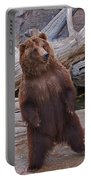 Dancing Grizzly Portable Battery Charger