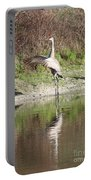 Dancing On The Pond Portable Battery Charger