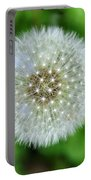 Dandelion 2 Portable Battery Charger