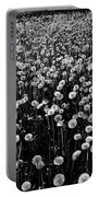 Dandelion Field In Black And White Portable Battery Charger