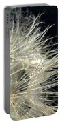 Dandelion Fifty Five Portable Battery Charger