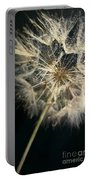 Dandelion Forty One Portable Battery Charger