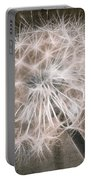 Dandelion In Brown Portable Battery Charger by Aimelle