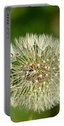 Dandelion Puff Portable Battery Charger
