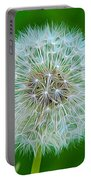 Dandelion Seed Head Expressionist Effect Portable Battery Charger