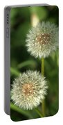Dandelion Seed Heads Portable Battery Charger
