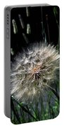 Dandelion Seedball Portable Battery Charger