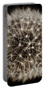 Dandelion Sun Portable Battery Charger