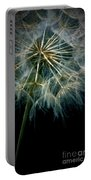 Dandelion Thirty Eight Portable Battery Charger