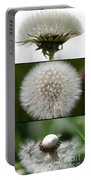 Dandelion Triptych Portable Battery Charger