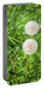Dandelions In Connecticut Portable Battery Charger