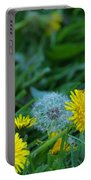 Dandelions, Young And Old Portable Battery Charger