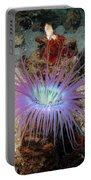 Dangerous Underwater Flower Portable Battery Charger