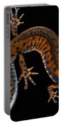 Danube Crested Newt Portable Battery Charger