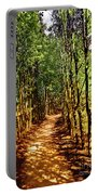 Dappled Days Portable Battery Charger