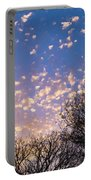 Dappled Sunset-1545 Portable Battery Charger