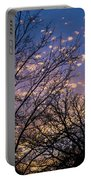 Dappled Sunset-1547 Portable Battery Charger