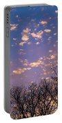 Dappled Sunset-1548 Portable Battery Charger