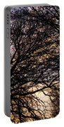 Dappled Sunset-1550 Portable Battery Charger