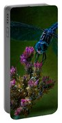 Dark Dragonfly Portable Battery Charger