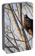 Dark-morph Western Red-tailed Hawks Portable Battery Charger