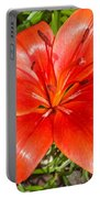 Dark Orange Red Lily II Portable Battery Charger