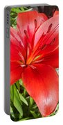 Dark Orange Red Lily Portable Battery Charger