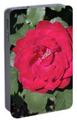 Dark Red Rose Portable Battery Charger