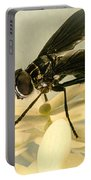Dark Winged Comb Footed Fly Portable Battery Charger
