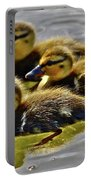 Darling Ducks Portable Battery Charger