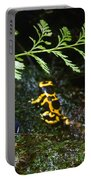 Dart Frogs On The Move Portable Battery Charger