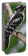 Daydreaming Downy Woodpecker Portable Battery Charger