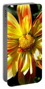 Dazzling Dahlia Photograph Portable Battery Charger
