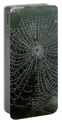 Db6325-dc Spiderweb On Sonoma Mountain Portable Battery Charger