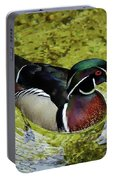 Dc Duck Portable Battery Charger