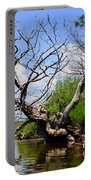 Dead Cedar Tree In Waccasassa Preserve Portable Battery Charger