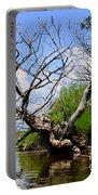 Dead Cedar Tree In Waccasassa Preserve Portable Battery Charger