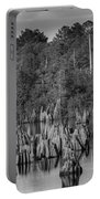 Dead Lakes Cypress Stumps Bw  Portable Battery Charger