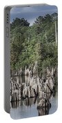 Dead Lakes Cypress Stumps Portable Battery Charger