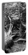 Deadwood Portable Battery Charger