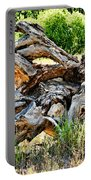 Deadwood On Cherry Creek Trail 4 Portable Battery Charger