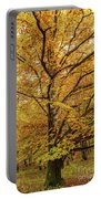 Deciduous Forest In The Autumn Portable Battery Charger