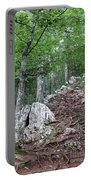 Deep Forest Rocky Path Nature Portable Battery Charger